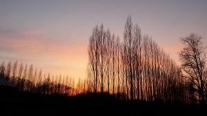 Sonneruntergang Treptower Park